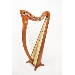 Location harpe celtique Camac