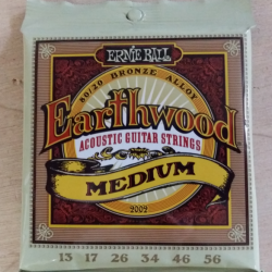 Cordes folk Ernie Ball Earthwood medium 13-56