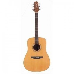 Guitare folk Takamine 330S