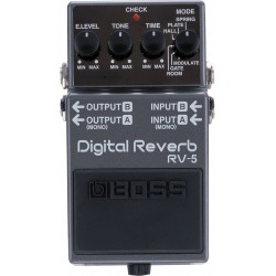 Reverb Boss RV5