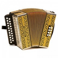 Accordéon diatonique Hohner 2915