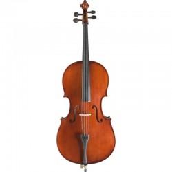 Location violon d'étude