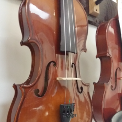Violon Stagg 4/4