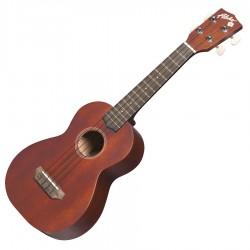 Ukulélé Aloha Concert