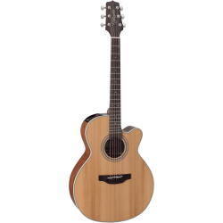 Takamine GN20CENS Electro-acoustique