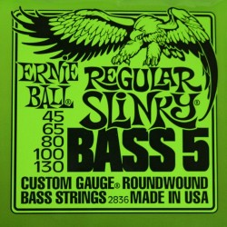 Cordes basse 5 cordes Ernie Ball Regular Slinky 45-130