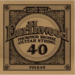 Ernie Ball 040 Earthwood 80/20 Bronze